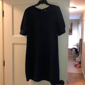 Navy shift dress from Loft